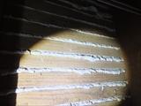 調査で発見した木摺漆喰壁_R