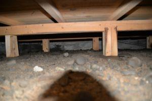 床下:土は多少高湿度